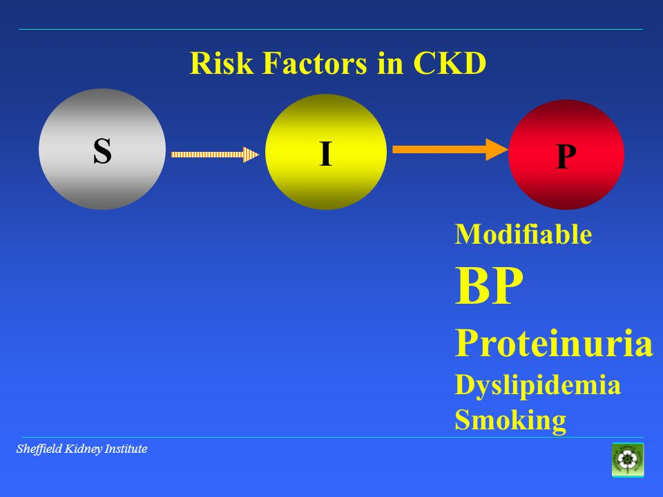 Sheffield Kidney Institute S I P Risk Factors in CKD Modifiable BP Proteinuria Dyslipidemia Smoking