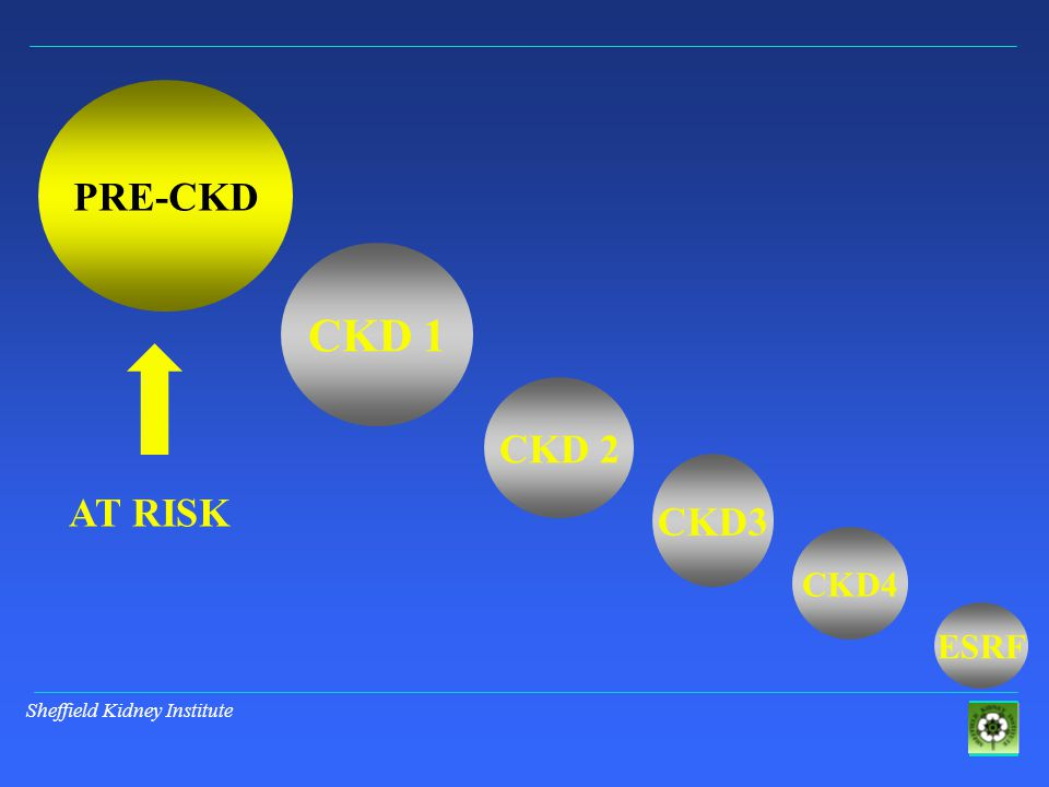 Sheffield Kidney Institute PRE-CKD CKD 1 CKD 2 CKD3 ESRF CKD4 AT RISK