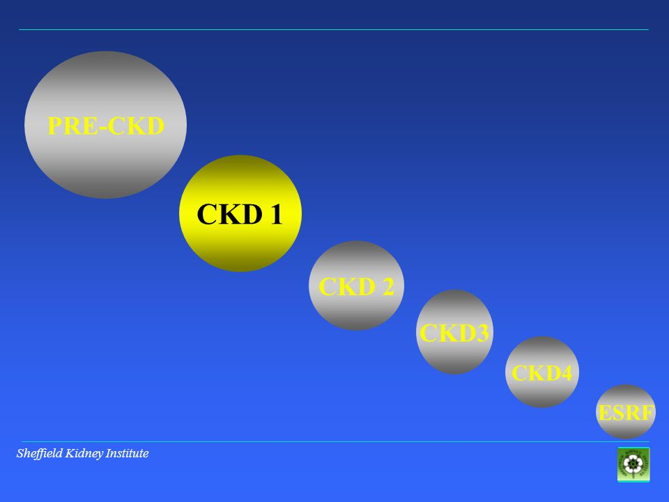 Sheffield Kidney Institute PRE-CKD CKD 1 CKD 2 CKD3 ESRF CKD4