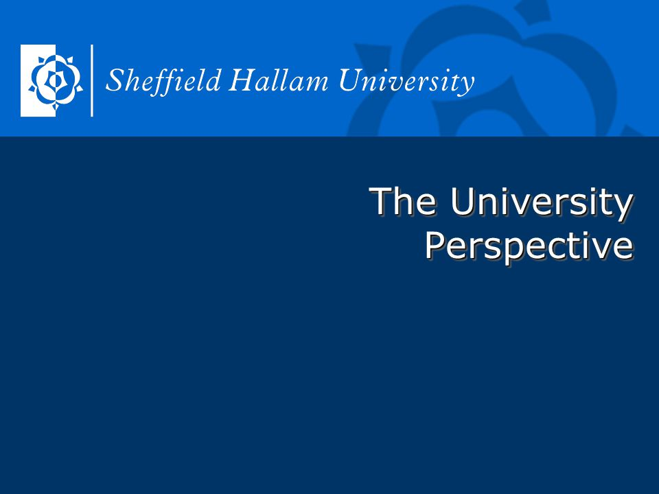 The University Perspective