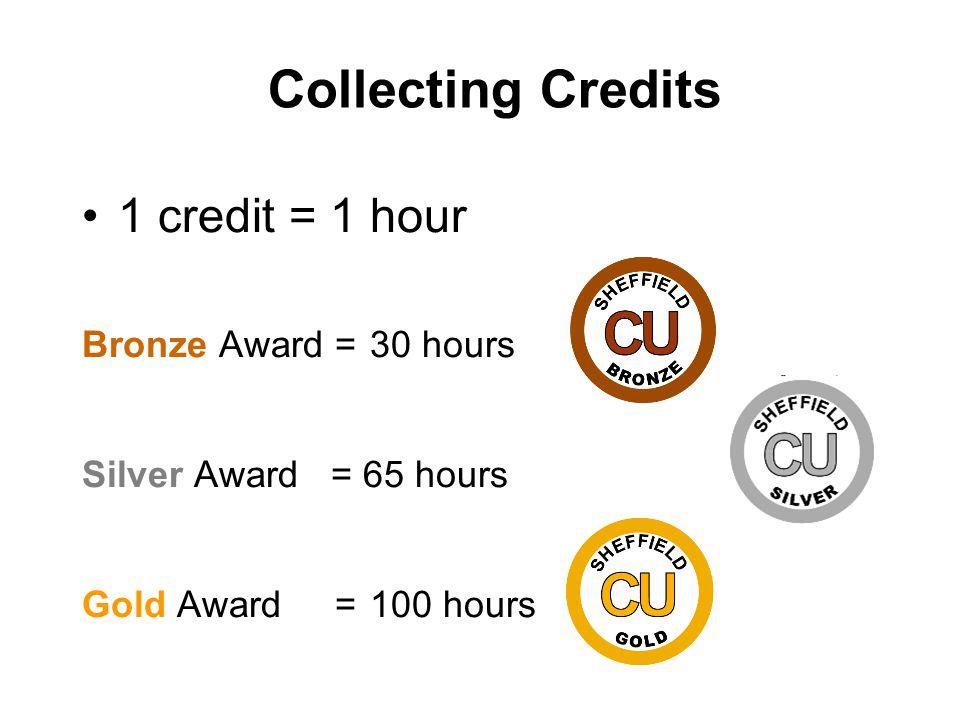 Collecting Credits 1 credit = 1 hour Bronze Award = 30 hours Silver Award = 65 hours Gold Award = 100 hours