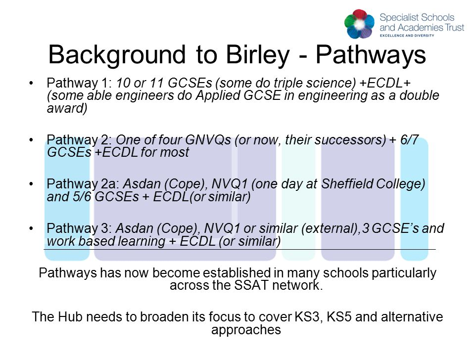 Background to Birley - Pathways Pathway 1: 10 or 11 GCSEs (some do triple science) +ECDL+ (some able engineers do Applied GCSE in engineering as a dou