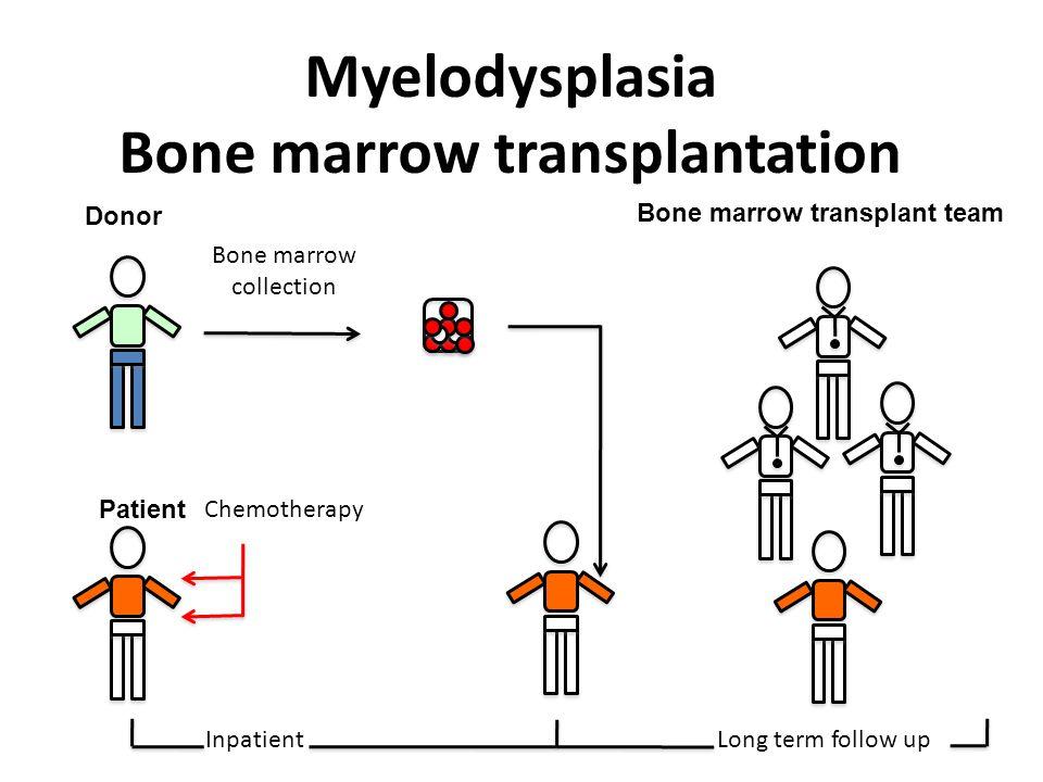 Donor Bone marrow collection Patient Chemotherapy Myelodysplasia Bone marrow transplantation Inpatient Long term follow up Bone marrow transplant team