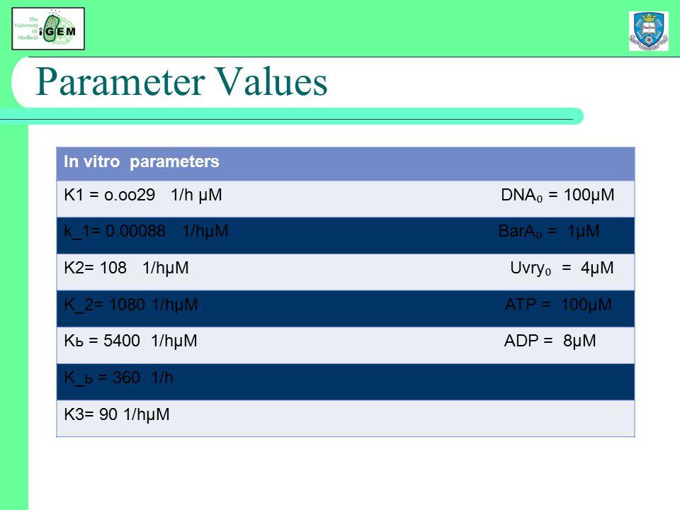 Parameter Values In vitro parameters K1 = o.oo29 1/h µM DNA ₀ = 100µM k_1= 0.00088 1/hµM BarA ₀ = 1µM K2= 108 1/hµM Uvry ₀ = 4µM K_2= 1080 1/hµM ATP = 100µM Kь = 5400 1/hµM ADP = 8µM K_ь = 360 1/h K3= 90 1/hµM