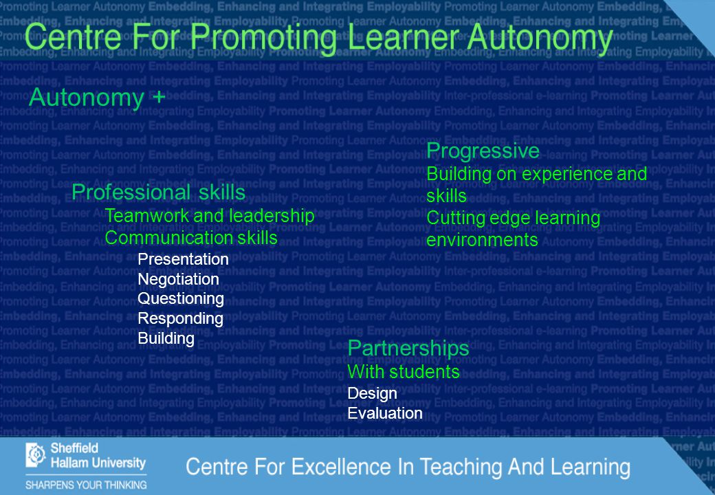 Autonomy + Professional skills Teamwork and leadership Communication skills Presentation Negotiation Questioning Responding Building Progressive Build
