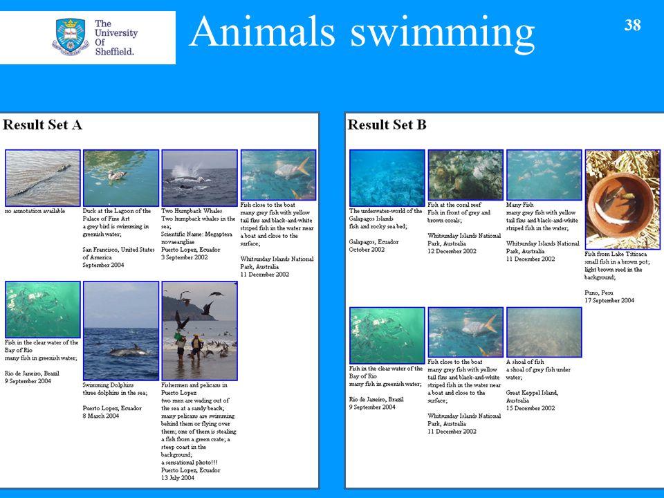 Animals swimming 09/05/2015 38