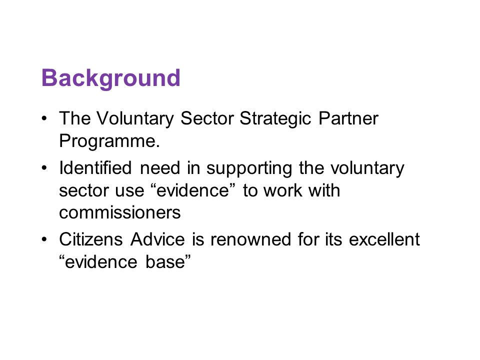 Background The Voluntary Sector Strategic Partner Programme.