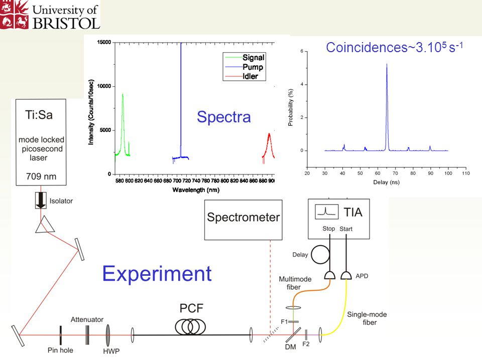 Experiment Spectra Coincidences~3.10 5 s -1