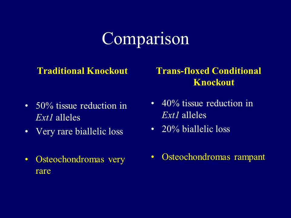 Comparison Traditional Knockout 50% tissue reduction in Ext1 alleles Very rare biallelic loss Osteochondromas very rare Trans-floxed Conditional Knockout 40% tissue reduction in Ext1 alleles 20% biallelic loss Osteochondromas rampant