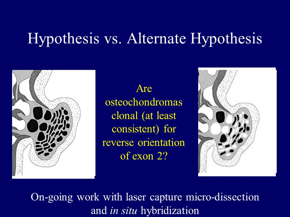 Hypothesis vs.