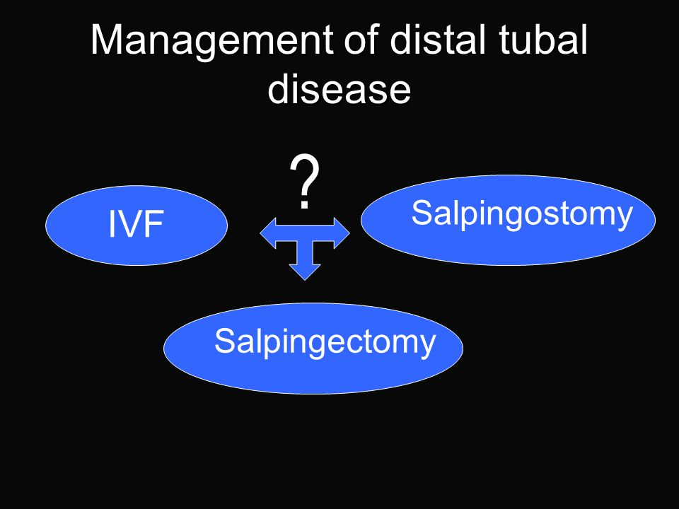 Areas to be covered Management of distal tubal disease Ovarian surgery revisited Haemostatic agent