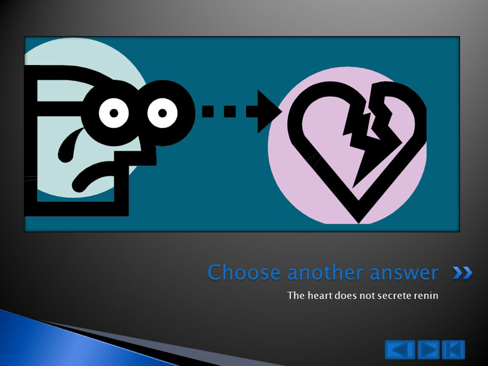 The heart does not secrete renin Choose another answer