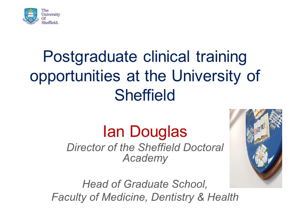 Postgraduate clinical training opportunities at the University of Sheffield Ian Douglas Director of the Sheffield Doctoral Academy Head of Graduate School, Faculty of Medicine, Dentistry & Health