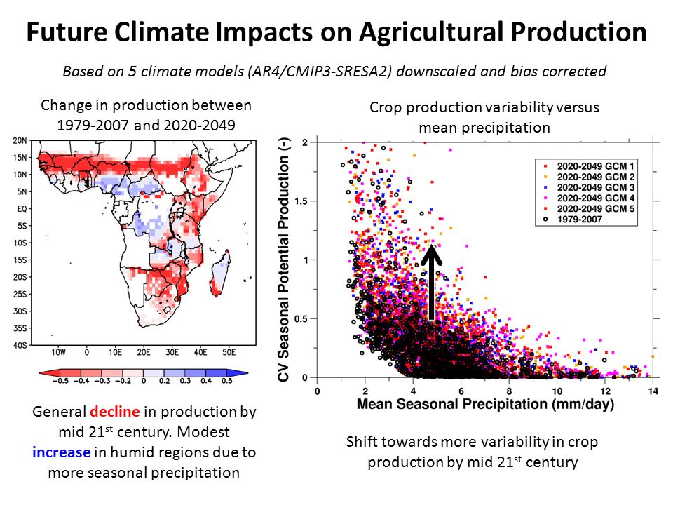 Future Climate Impacts on Agricultural Production General decline in production by mid 21 st century.