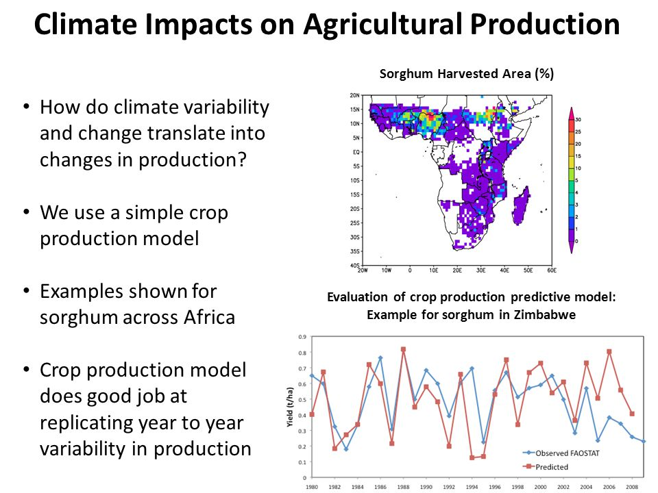 Climate Variability Impacts on Agricultural Production Seasonal precipitation is highly variable from year to year This translates into even higher variability in crop production from year to year Wetter regions  More variability 