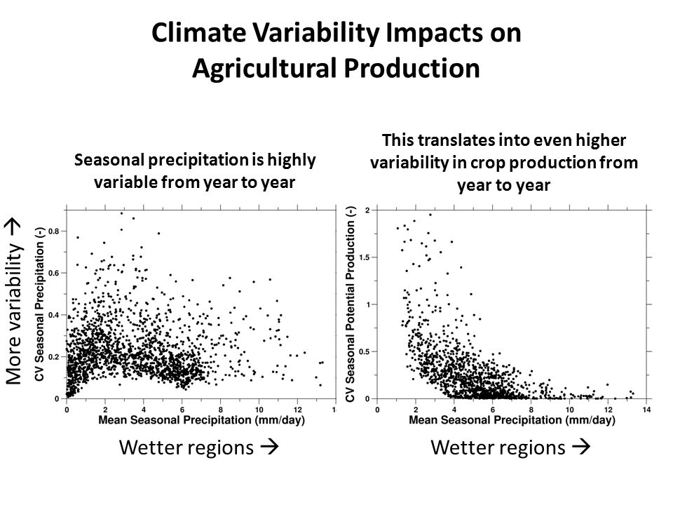 Climate Variability Impacts on Agricultural Production Seasonal precipitation is highly variable from year to year This translates into even higher variability in crop production from year to year Wetter regions  More variability 