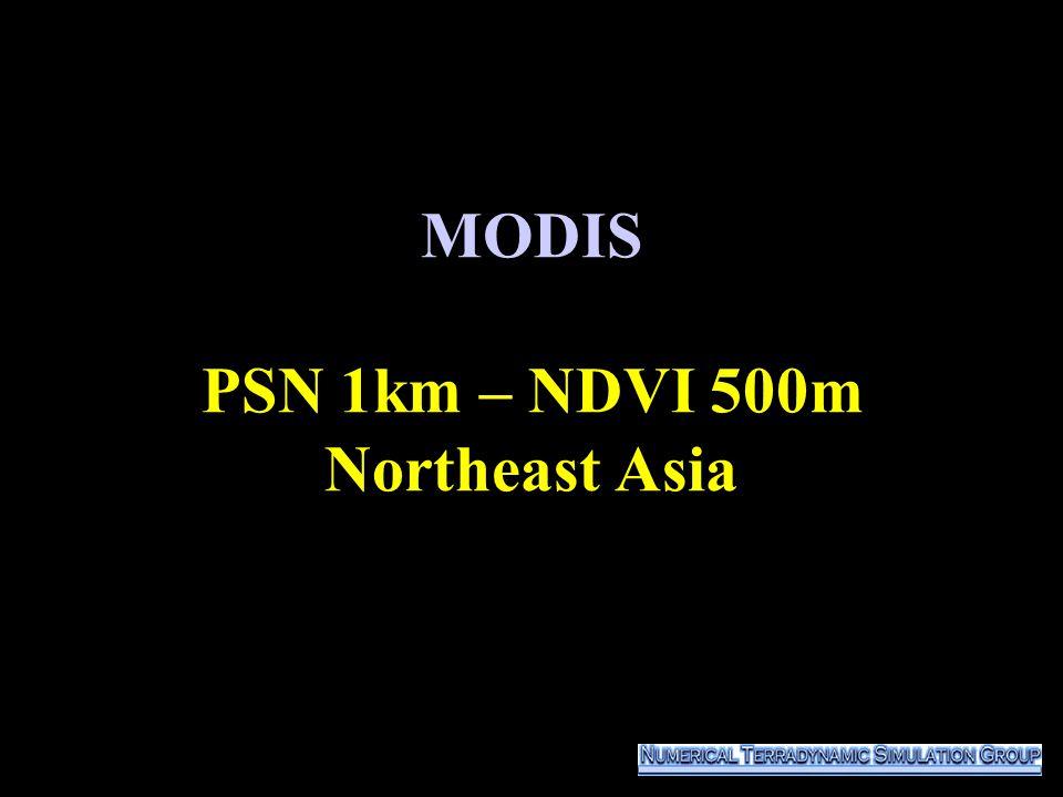 MODIS PSN 1km – NDVI 500m Northeast Asia