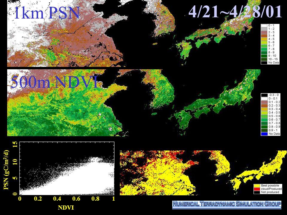 4/21~4/28/01 0 0.2 0.4 0.6 0.8 1 NDVI PSN (gC/m 2 /d) 0 5 10 15 500m NDVI 1km PSN