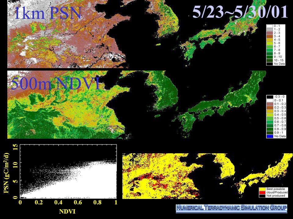 5/23~5/30/01 0 0.2 0.4 0.6 0.8 1 NDVI PSN (gC/m 2 /d) 0 5 10 15 500m NDVI 1km PSN
