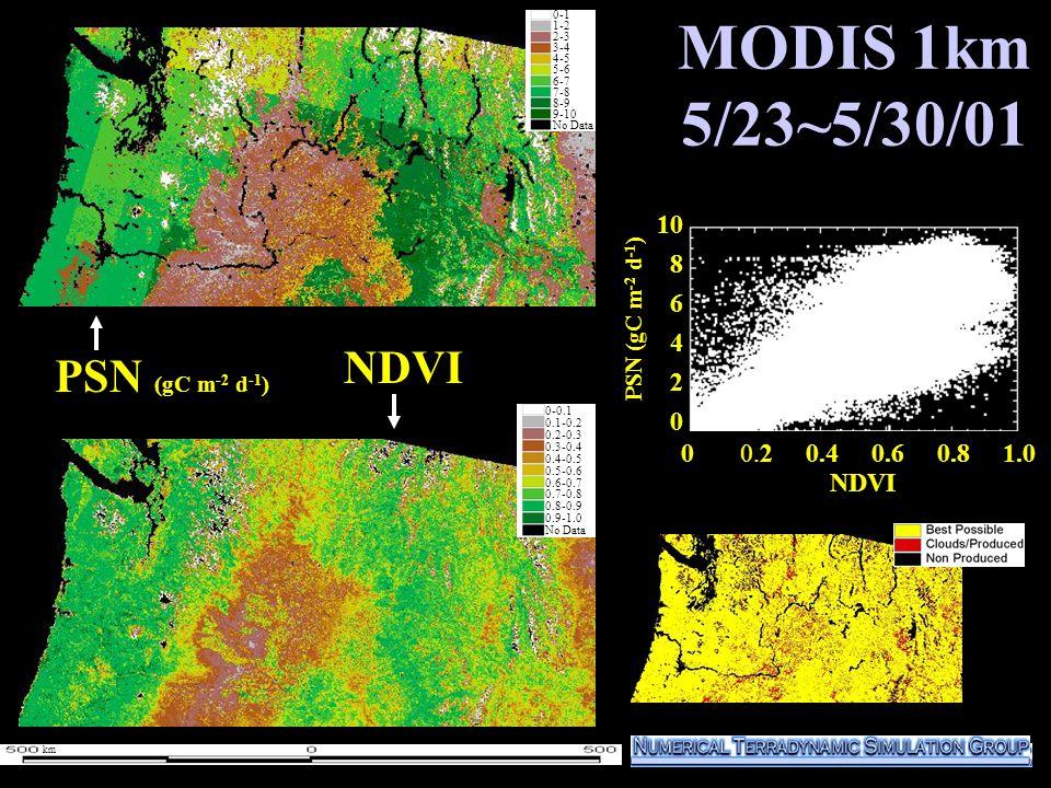 MODIS 1km 5/23~5/30/01 10 8 6 4 2 0 PSN (gC m -2 d -1 ) NDVI 0-1 1-2 2-3 3-4 4-5 5-6 6-7 7-8 8-9 9-10 No Data 0-0.1 0.1-0.2 0.2-0.3 0.3-0.4 0.4-0.5 0.5-0.6 0.6-0.7 0.7-0.8 0.8-0.9 0.9-1.0 No Data km NDVI 0 0.2 0.4 0.6 0.8 1.0