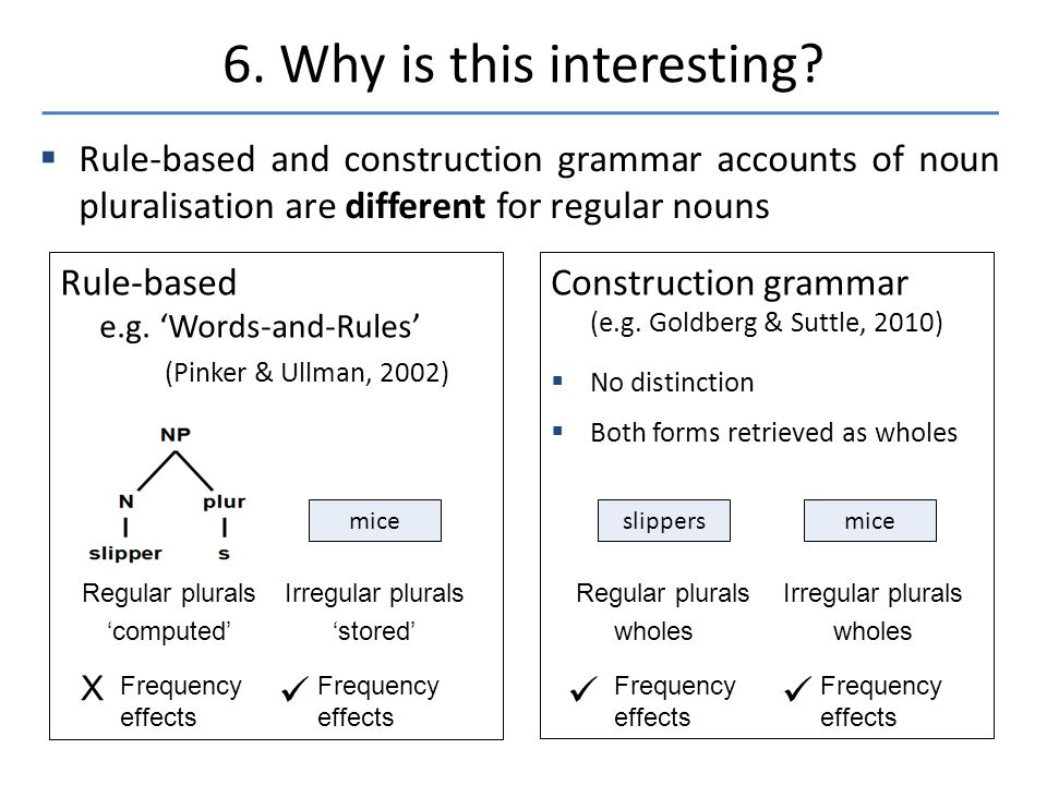  Rule-based and construction grammar accounts of noun pluralisation are different for regular nouns 6.