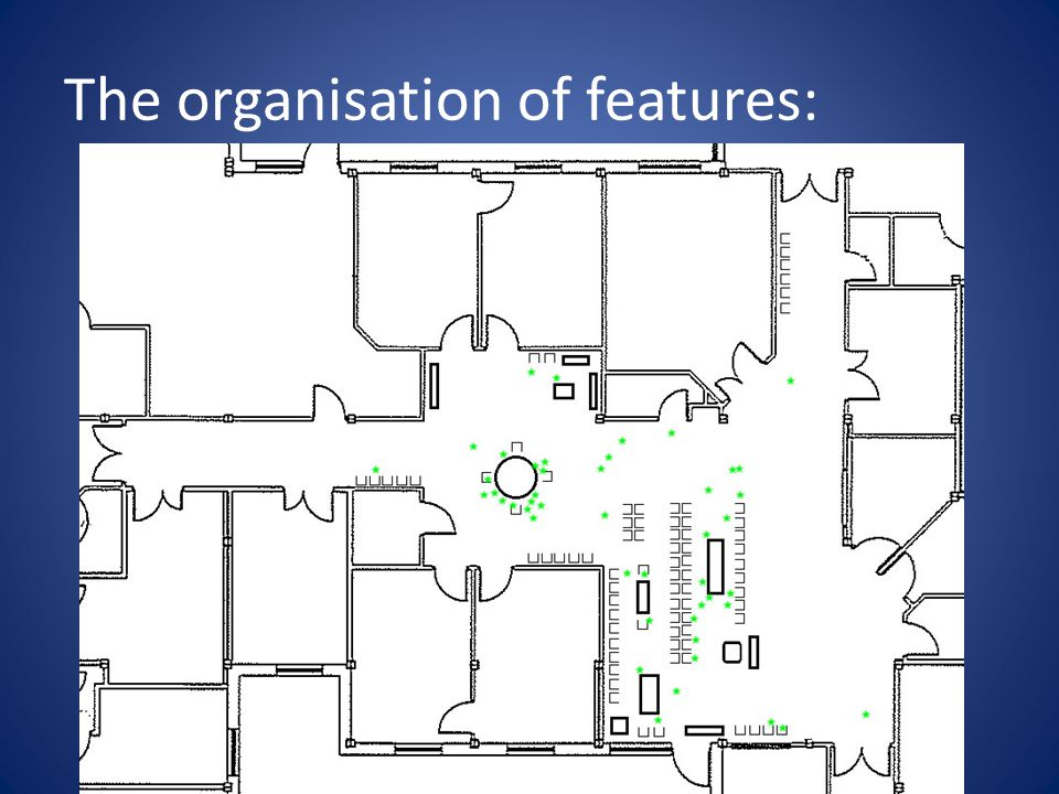 The organisation of features: