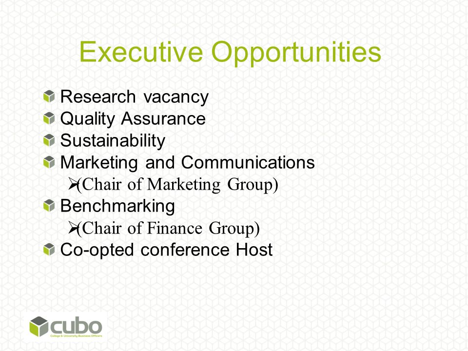 Executive Opportunities Research vacancy Quality Assurance Sustainability Marketing and Communications  (Chair of Marketing Group) Benchmarking  (Chair of Finance Group) Co-opted conference Host