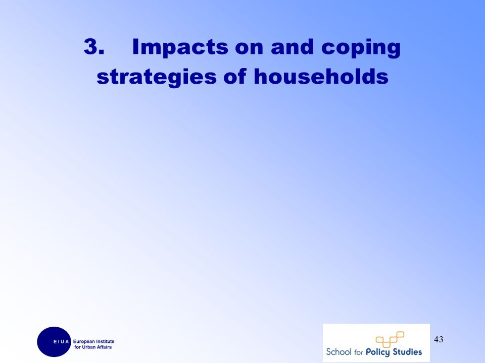 3.Impacts on and coping strategies of households 43