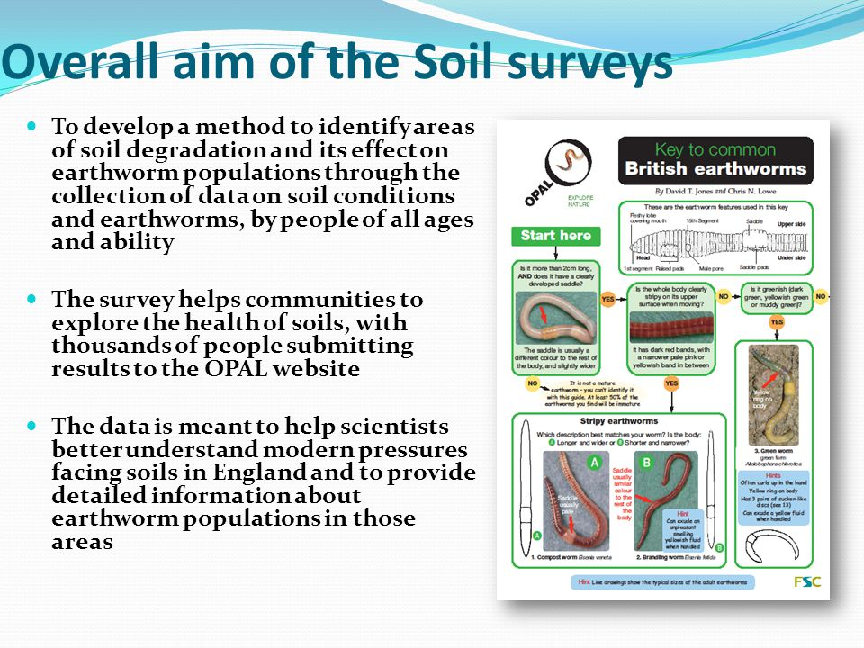 Overall aim of the Soil surveys To develop a method to identify areas of soil degradation and its effect on earthworm populations through the collection of data on soil conditions and earthworms, by people of all ages and ability The survey helps communities to explore the health of soils, with thousands of people submitting results to the OPAL website The data is meant to help scientists better understand modern pressures facing soils in England and to provide detailed information about earthworm populations in those areas