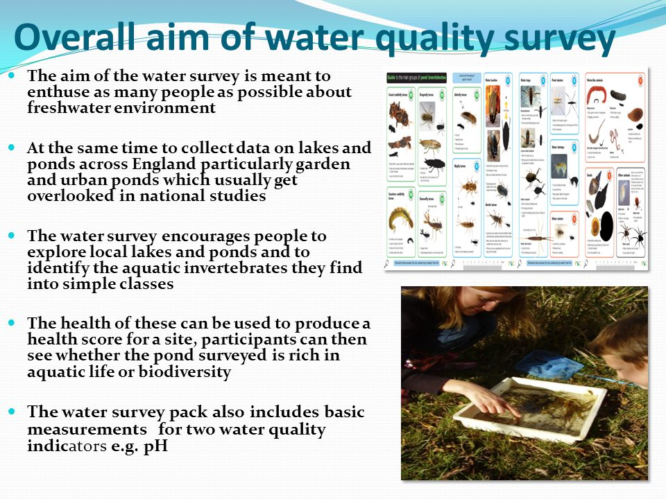 Overall aim of water quality survey The aim of the water survey is meant to enthuse as many people as possible about freshwater environment At the same time to collect data on lakes and ponds across England particularly garden and urban ponds which usually get overlooked in national studies The water survey encourages people to explore local lakes and ponds and to identify the aquatic invertebrates they find into simple classes The health of these can be used to produce a health score for a site, participants can then see whether the pond surveyed is rich in aquatic life or biodiversity The water survey pack also includes basic measurements for two water quality indicators e.g.