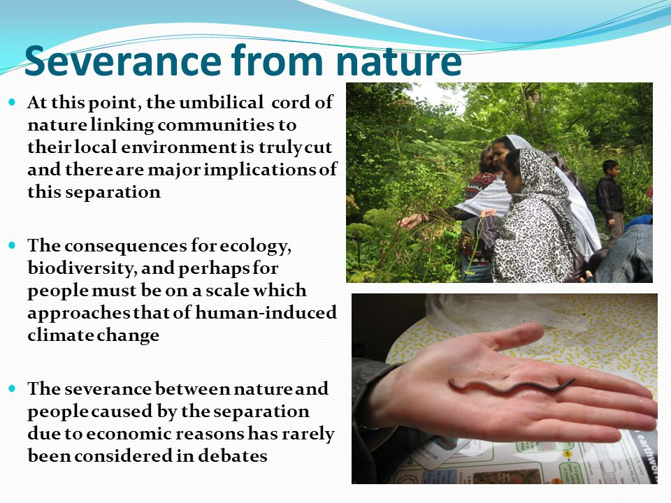Severance from nature At this point, the umbilical cord of nature linking communities to their local environment is truly cut and there are major implications of this separation The consequences for ecology, biodiversity, and perhaps for people must be on a scale which approaches that of human-induced climate change The severance between nature and people caused by the separation due to economic reasons has rarely been considered in debates