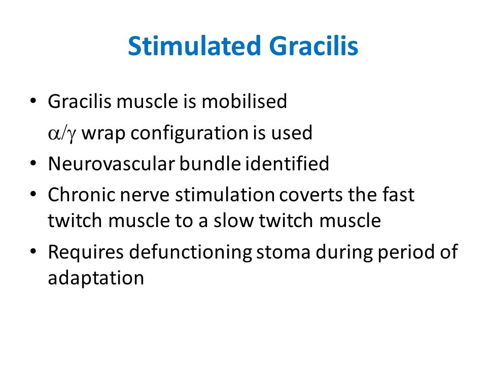 Stimulated Gracilis Gracilis muscle is mobilised  wrap configuration is used Neurovascular bundle identified Chronic nerve stimulation coverts the fast twitch muscle to a slow twitch muscle Requires defunctioning stoma during period of adaptation