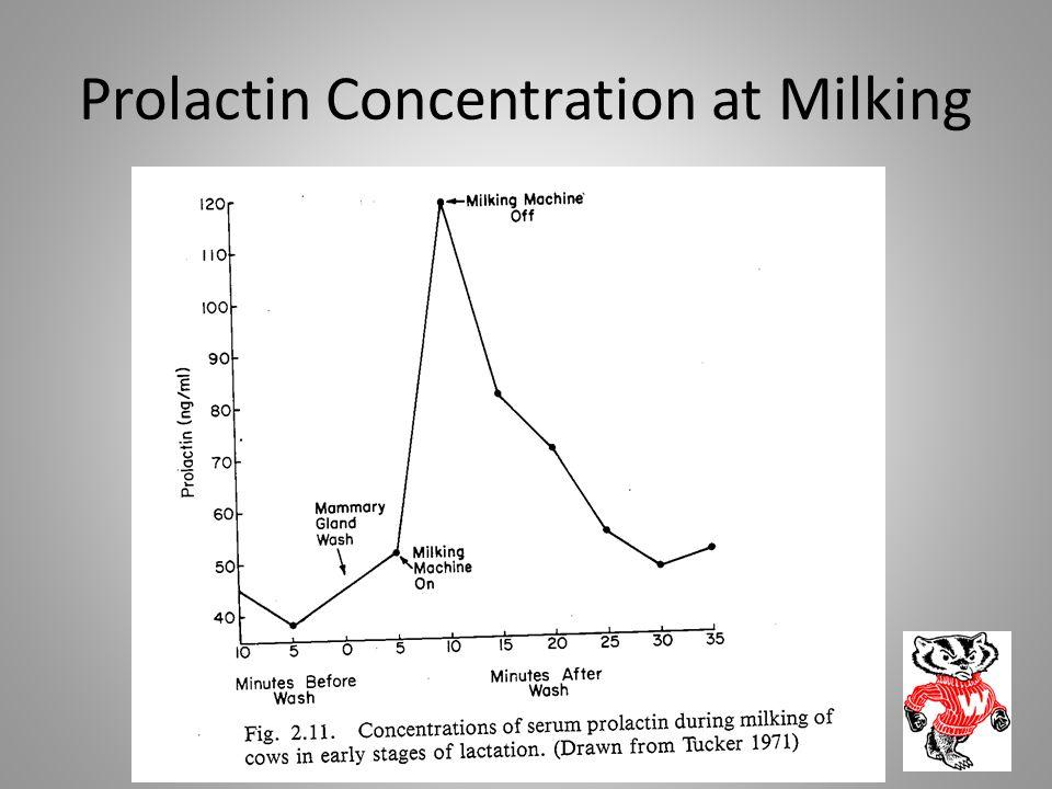 Prolactin Concentration at Milking