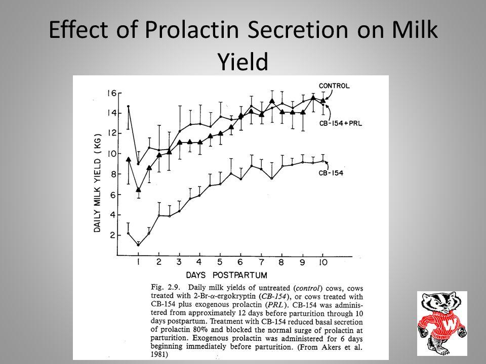 Effect of Prolactin Secretion on Milk Yield