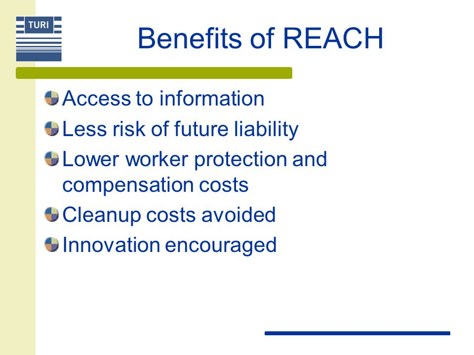 Benefits of REACH Access to information Less risk of future liability Lower worker protection and compensation costs Cleanup costs avoided Innovation encouraged