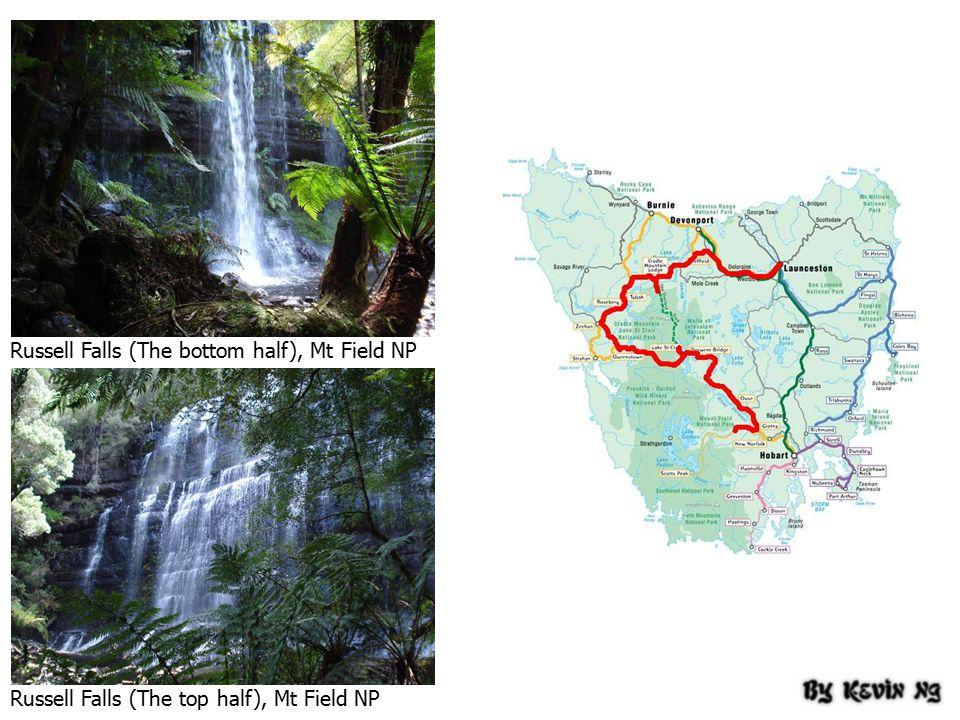 Russell Falls (The bottom half), Mt Field NP Russell Falls (The top half), Mt Field NP