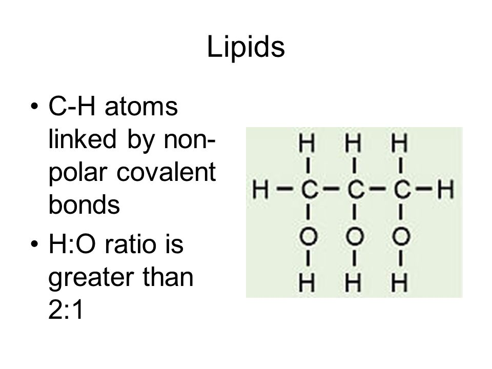 Lipids C-H atoms linked by non- polar covalent bonds H:O ratio is greater than 2:1
