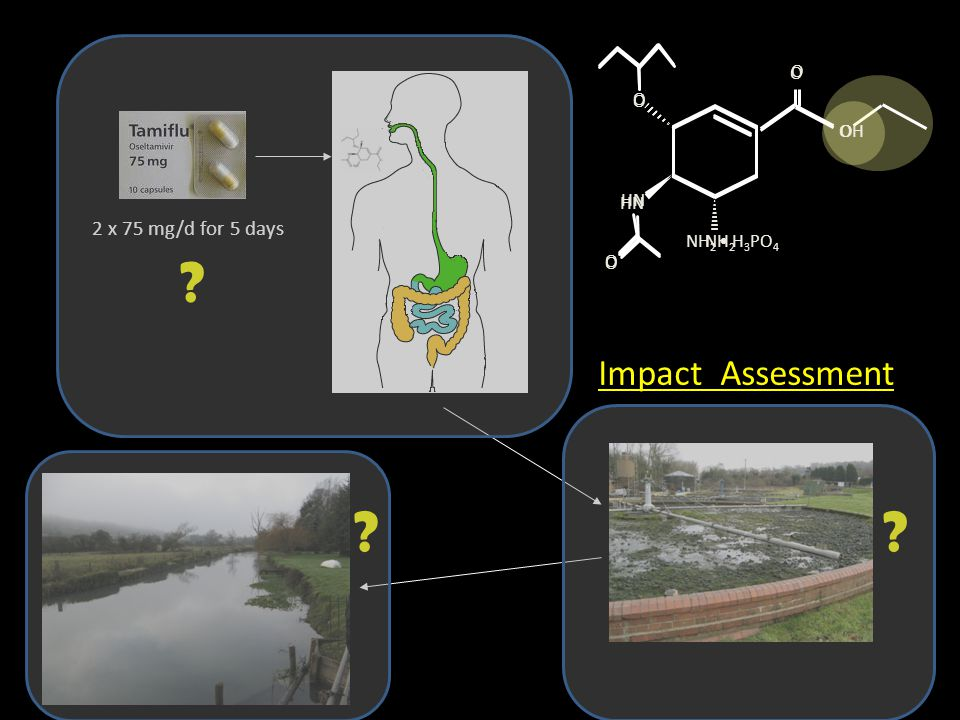 Spatial distribution of toxicity in WWTPs & Rivers % of Thames River length >5% PAF≤ 10≤ 40% of sewage plants >5% PAF≤ 85≤100