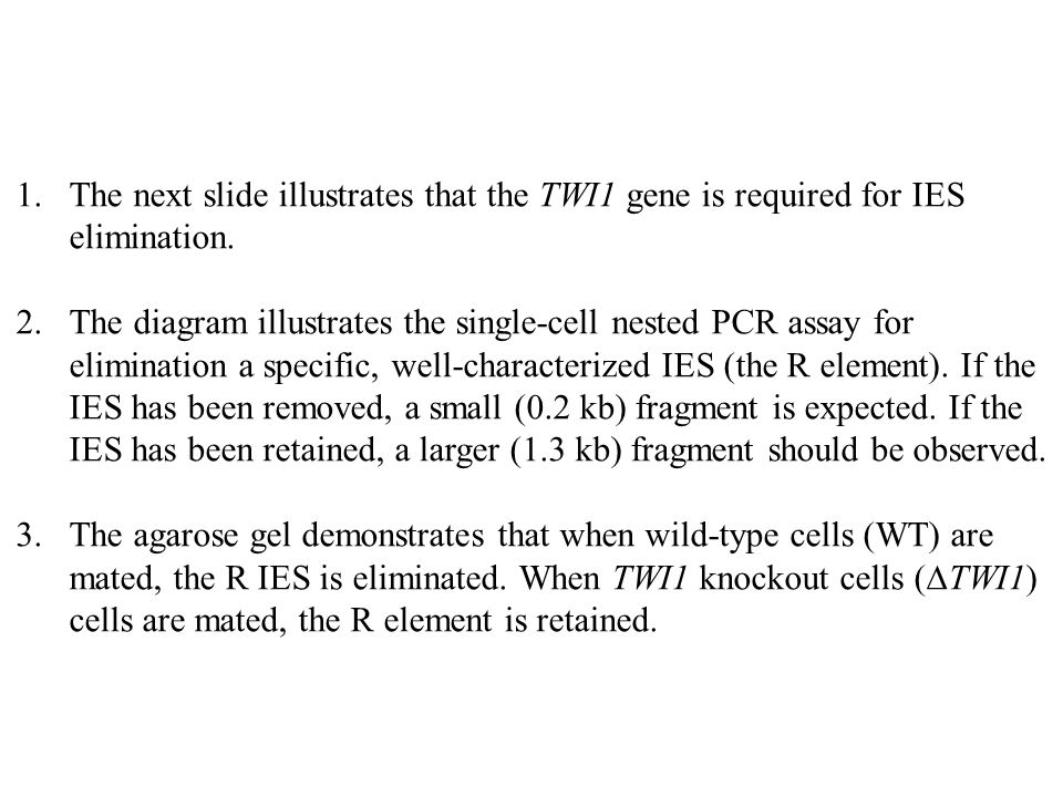 1.The next slide illustrates that the TWI1 gene is required for IES elimination. 2.The diagram illustrates the single-cell nested PCR assay for elimin