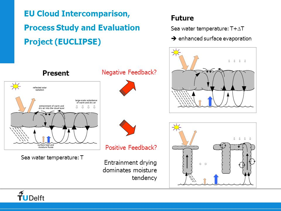 EU Cloud Intercomparison, Process Study and Evaluation Project (EUCLIPSE) Future Sea water temperature: T+  T  enhanced surface evaporation Present Sea water temperature: T Positive Feedback.