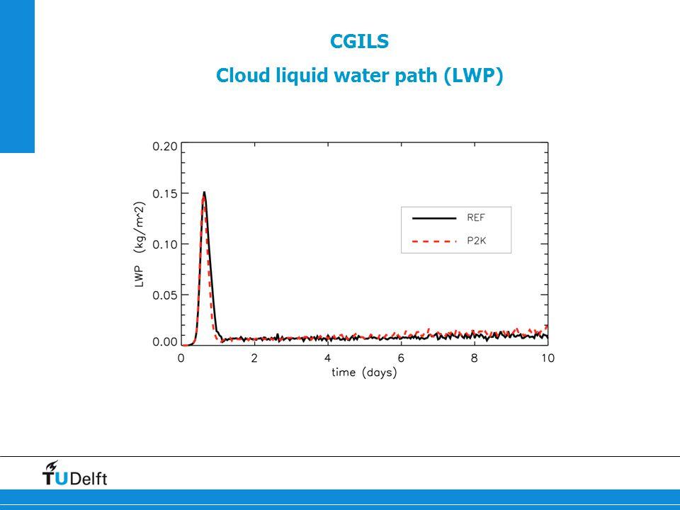 CGILS Cloud liquid water path (LWP)