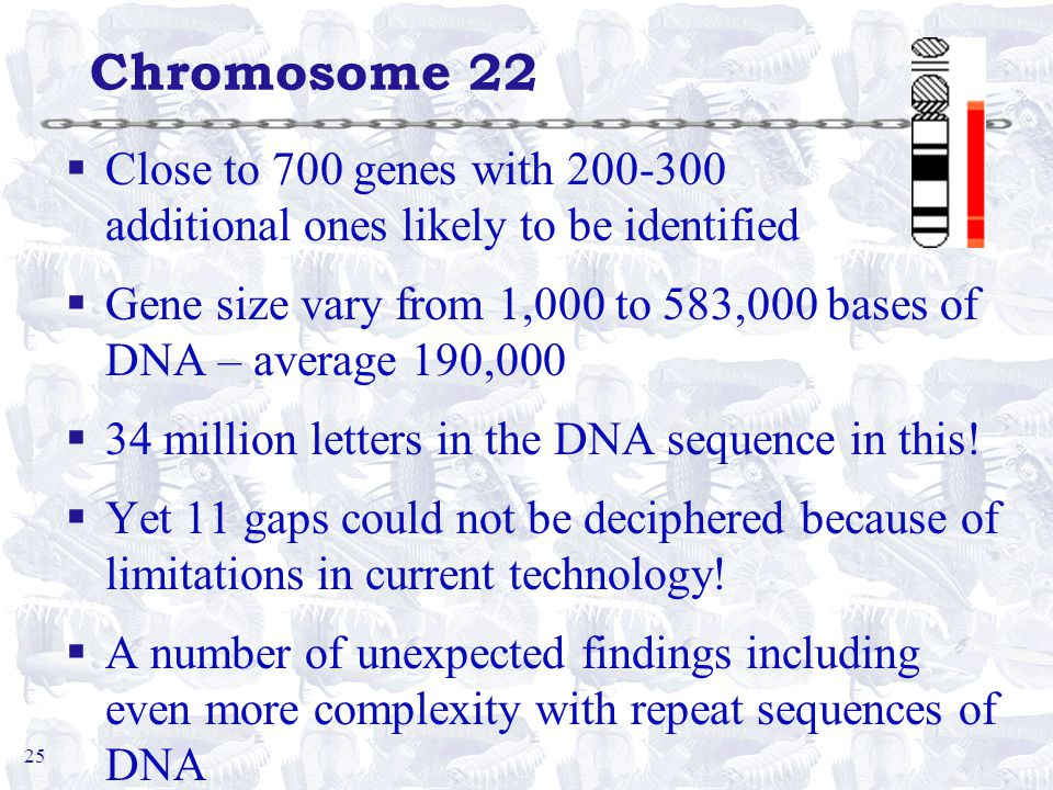 25 Chromosome 22 §Close to 700 genes with 200-300 additional ones likely to be identified §Gene size vary from 1,000 to 583,000 bases of DNA – average 190,000 §34 million letters in the DNA sequence in this.