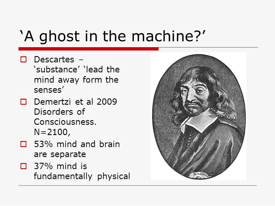 'A ghost in the machine '  Descartes – 'substance' 'lead the mind away form the senses'  Demertzi et al 2009 Disorders of Consciousness.