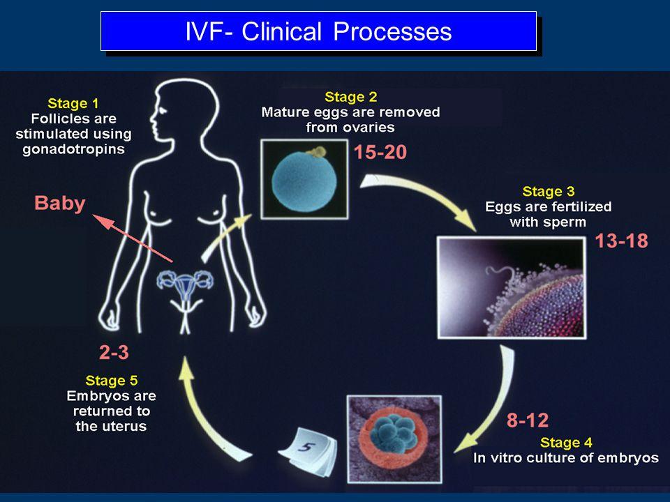 IVF Steps Ovarian down-regulation w/ OCP, GnRH agonist or antagonist Controlled ovarian hyperstimulation with gonadotropins; U/S, E2 monitoring Trigge