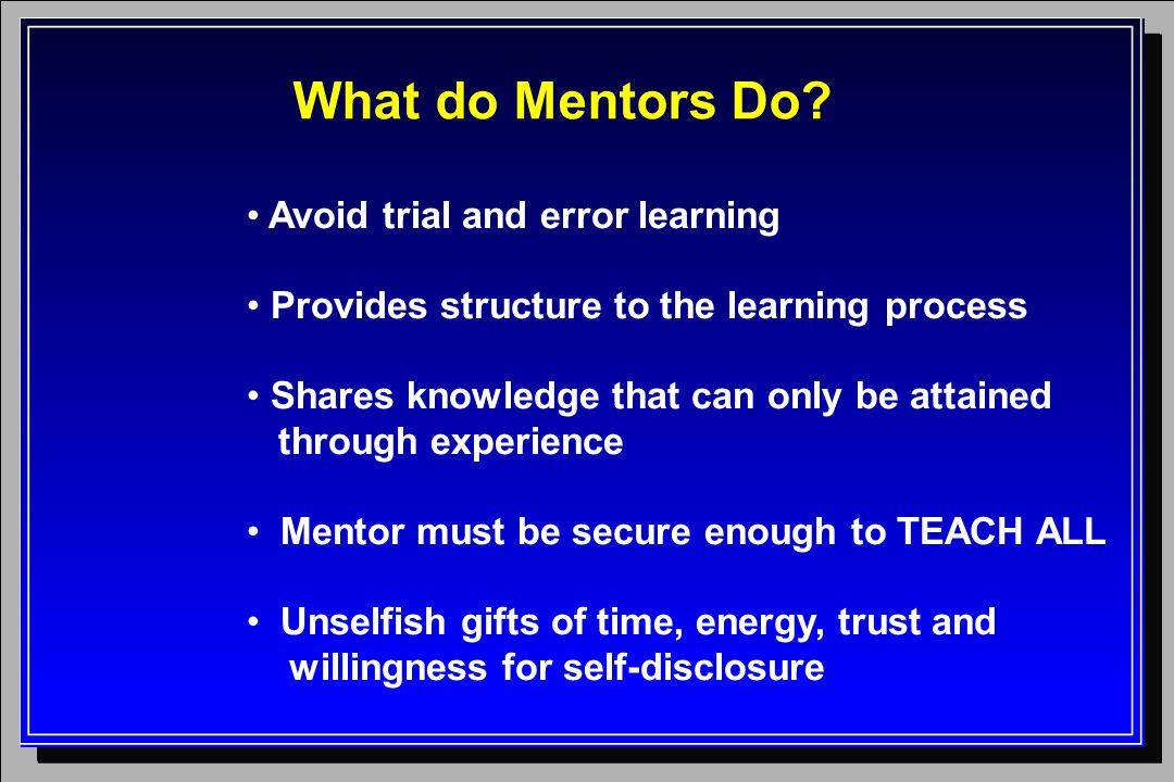 What do Mentors Do.