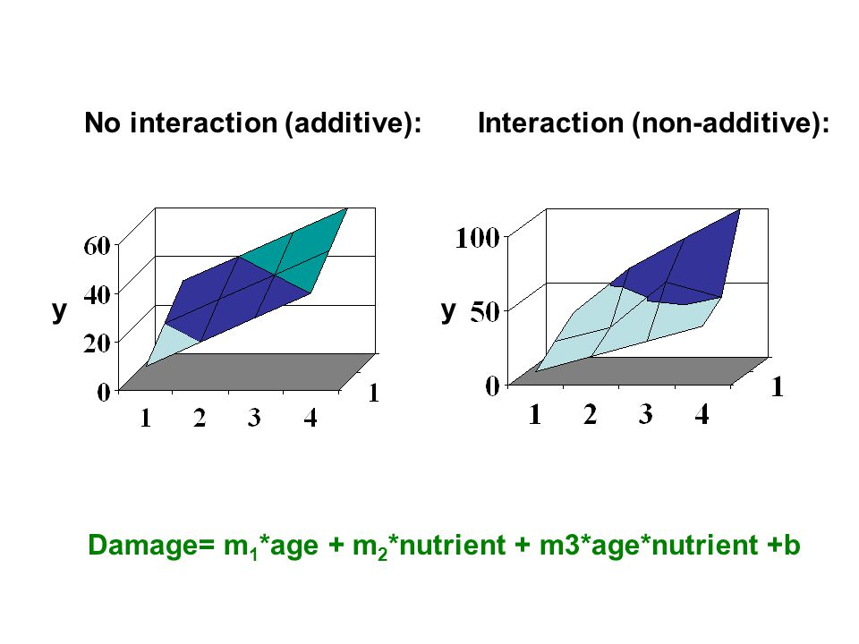 Damage= m 1 *age + m 2 *nutrient + m3*age*nutrient +b No interaction (additive):Interaction (non-additive): yy