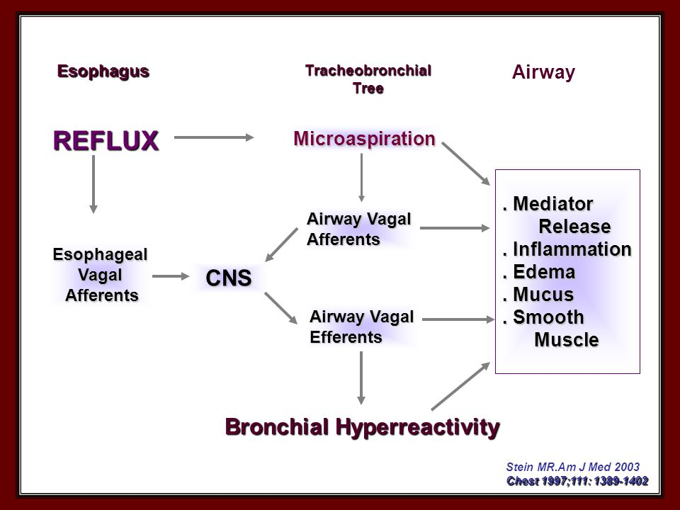 . Mediator Release Release. Inflammation. Edema. Mucus. Smooth Muscle Muscle Microaspiration REFLUX EsophagealVagal Afferents Afferents Bronchial Hype