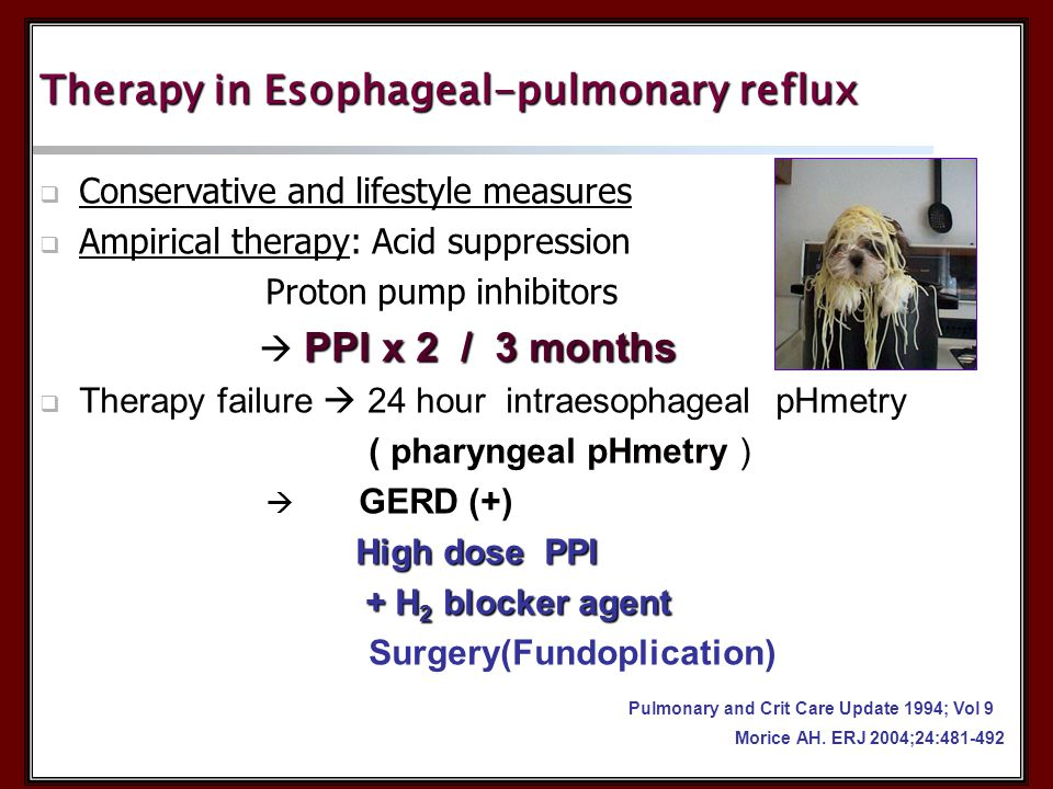 Therapy in Esophageal-pulmonary reflux  Conservative and lifestyle measures  Ampirical therapy: Acid suppression Proton pump inhibitors Proton pump