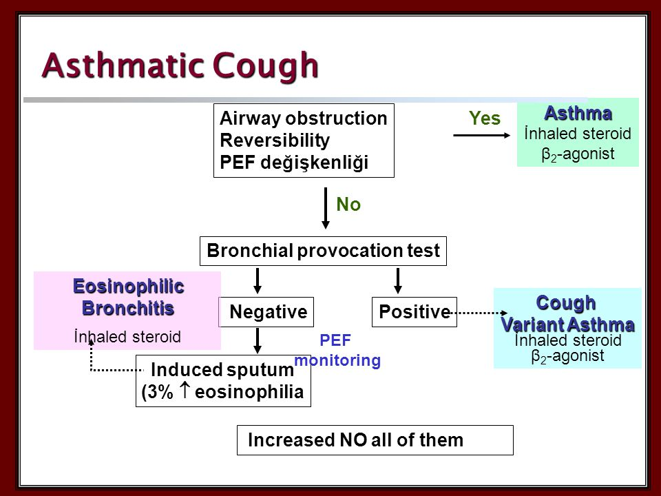 Positive Cough Variant Asthma İnhaled steroid β 2 -agonist Negative Induced sputum (3%  eosinophilia Eosinophilic Bronchitis İnhaled steroid Asthmatic Cough Airway obstruction Reversibility PEF değişkenliğiAsthma İnhaled steroid β 2 -agonist Yes Bronchial provocation test No Increased NO all of them PEF monitoring