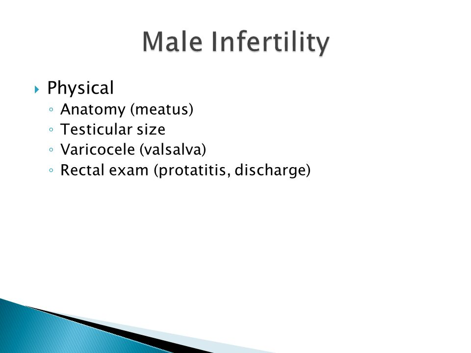  Physical ◦ Anatomy (meatus) ◦ Testicular size ◦ Varicocele (valsalva) ◦ Rectal exam (protatitis, discharge)